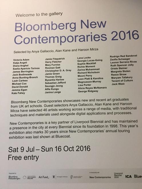 Liverpool Biennale – Oct 2016 – She's a Fine Artist